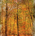 Watercolour Painting Of Vibrant Autumn Fall Forest Landscape Ima by Matthew Gibson