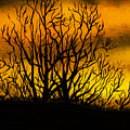 Watercolour Sunset by Svetlana Sewell