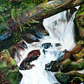 Waterfall 1 by Terry R MacDonald