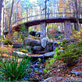 Waterfall And A Bridge In The Fall by Anne Cameron Cutri