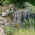 Waterfall And Pond by Liz Santie