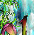 Waterfall by Anne Weirich