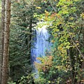 Waterfall Beyond The Trees by Brenda Ackerman