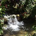Waterfall by Bob Johnson