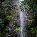 Waterfall by Daniel Murphy