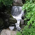 Waterfall by Ellen  Leigh