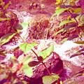 Waterfall Garden Pink Falls by Kyle Hanson