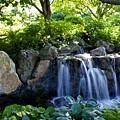 Waterfall Garden by Sharin Gabl