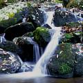 Waterfall by Gene Sizemore