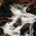 Waterfall In Caledonia State Park by Raymond Salani III
