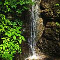 Waterfall In Forest by Elena Elisseeva