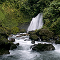 Waterfall In La Fortuna by Patricia Bolgosano