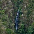 Waterfall In The Intag 5 by Teresa Stallings