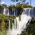 Waterfall In The Jungle by Mirko Chianucci