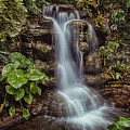 Waterfall In The Opryland Hotel by Diana Powell