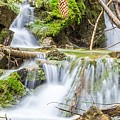 Waterfall In The Woods by Livia Pavelescu