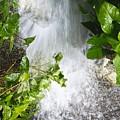 Waterfall by Kenneth Albin