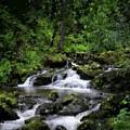 Waterfall Medley by Michael Schimank