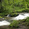 Waterfall Oasis by Tina B Hamilton