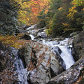 Waterfall Off Blue Ridge Parkway by Jill Lang
