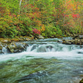 Waterfall On Little Pigeon River Smoky Mountains by Carol Mellema