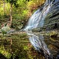Waterfall Reflections by Debra and Dave Vanderlaan