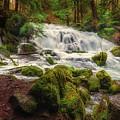 Waterfall Reverie by S A Littau