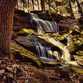 Waterfall Through The Trees by Megan Miller