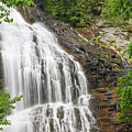 Waterfall With Green Leaves by Jill Lang