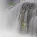 Waterfalls2 by Trina Huston