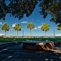 Waterfront Park. by TJ Baccari