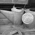 Watering Cans And Tubs B  W by D Hackett