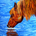Watering Hole Horse Painting by Mary Jo Zorad
