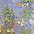 Waterlilies, Cluster Of Grass by Claude Monet