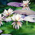 Waterlilies by Michael Pearson