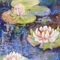 Waterlillies by Caroline Patrick