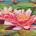 Waterlillies by Robynne Hardison