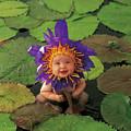 Waterlily by Anne Geddes
