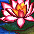 Waterlily by Stephanie  Jolley