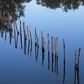 Waterline by John Cumbow