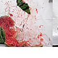 Watermelon Progression by Tim Dussault