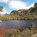 Waterside At Wombat Pool by Nicholas Blackwell
