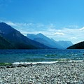 Waterton Beachcomber by Tracey Vivar
