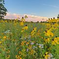 Prairie 1 by Paul Schultz