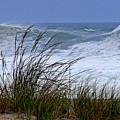 Wave And Sea Grass by Tom LoPresti