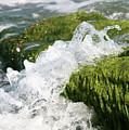 Wave Splash On The Green Rock by Idan Badishi