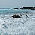 Wave Spray by Tammy J