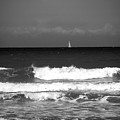 Waves 4 In Bw by Susanne Van Hulst