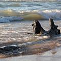 Waves Crashing by Lauren Mohr