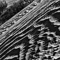 Waves Of Desert Sand by Blake Richards